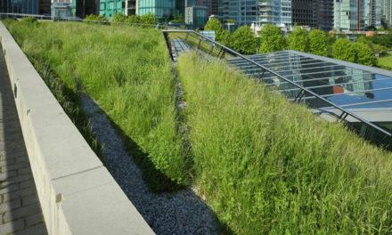 Initiatives – Des solutions Biotop pour les entreprises